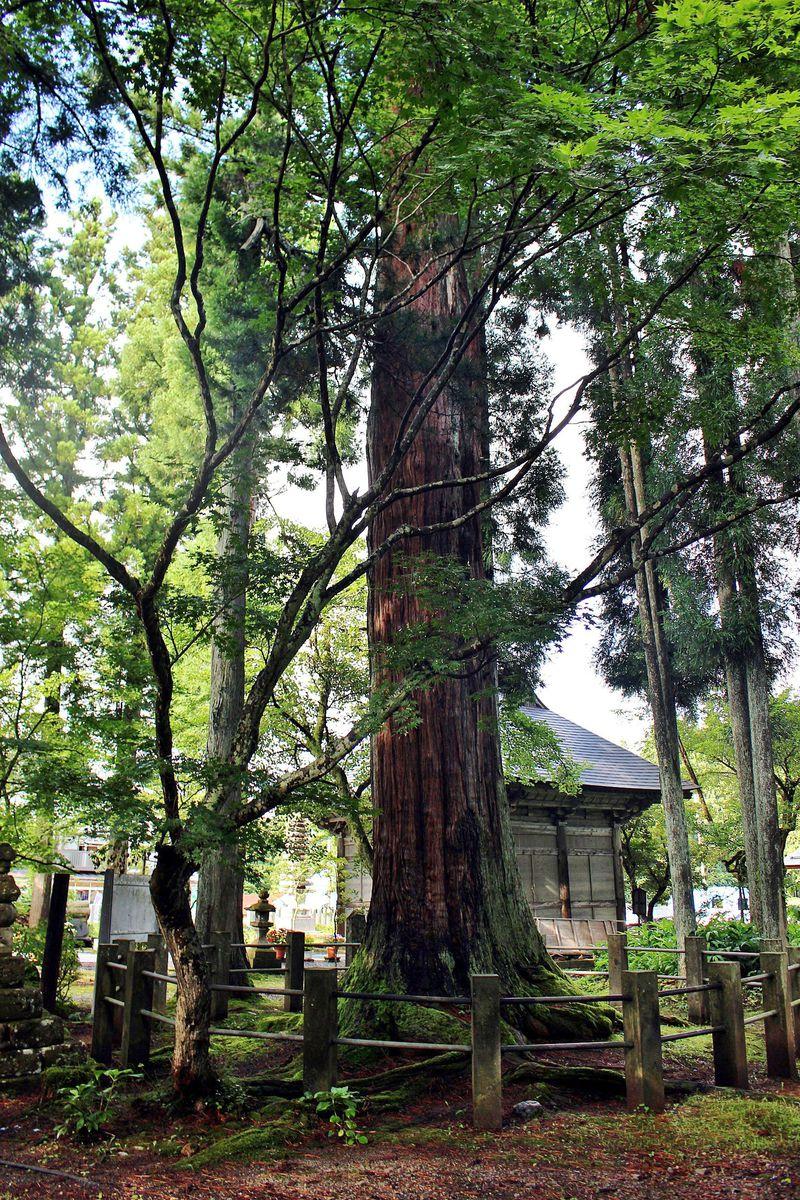 西方浄土へ!不思議な造りの観音堂と徳一菩薩