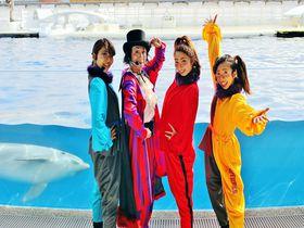 話題の劇場型イルカパフォーマンス!京都水族館「ラ・ラ・フィンサーカス」第3章