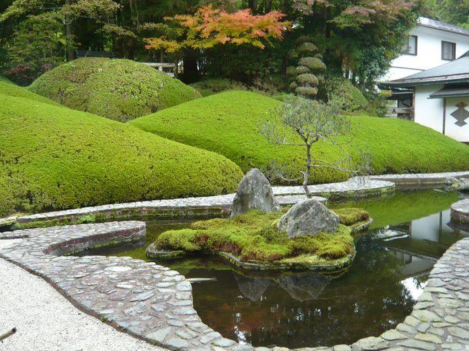 高野山観光で「宿坊」に泊まってみよう