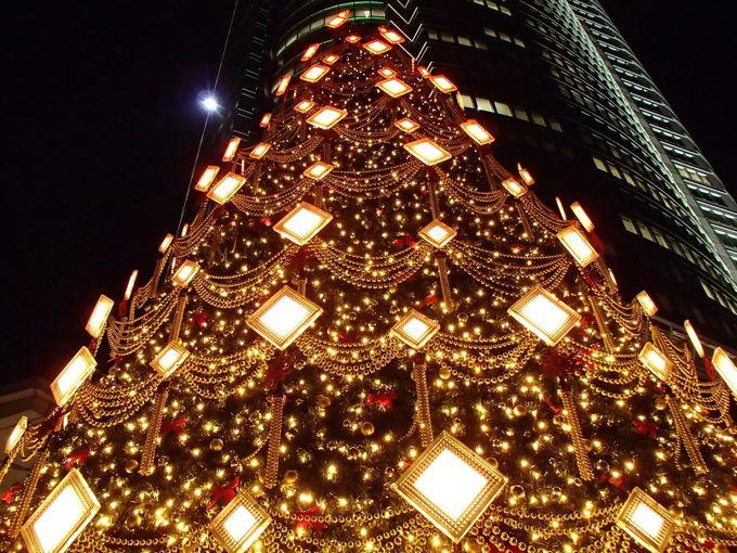 ディテールまで美しいイルミネーション・クリスマスツリー!