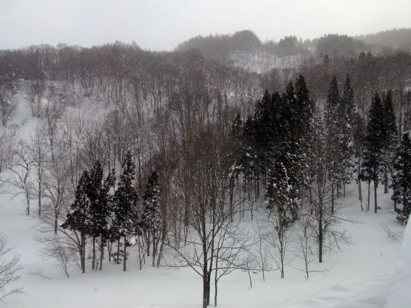 絶景!一面の銀世界を歩くパワースポット山形・月山のスノーシューと雪見温泉を楽しもう!