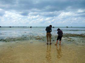 海を歩く!?春の潮が大きく引く沖縄・宮古島の海で「浜下り」体験!