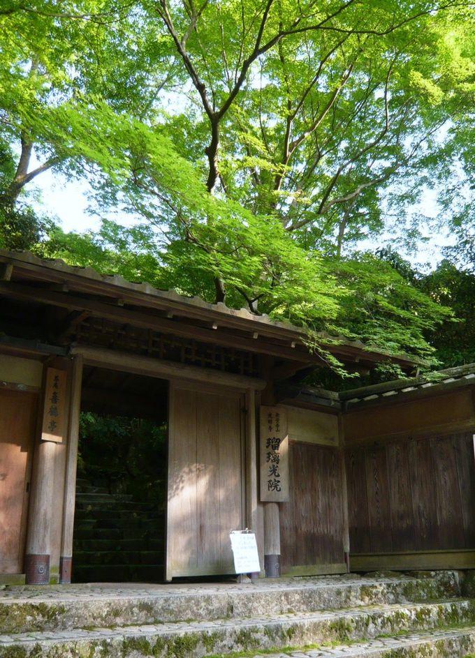 新緑あふれる八瀬大原の瑠璃光院(るりこういん)