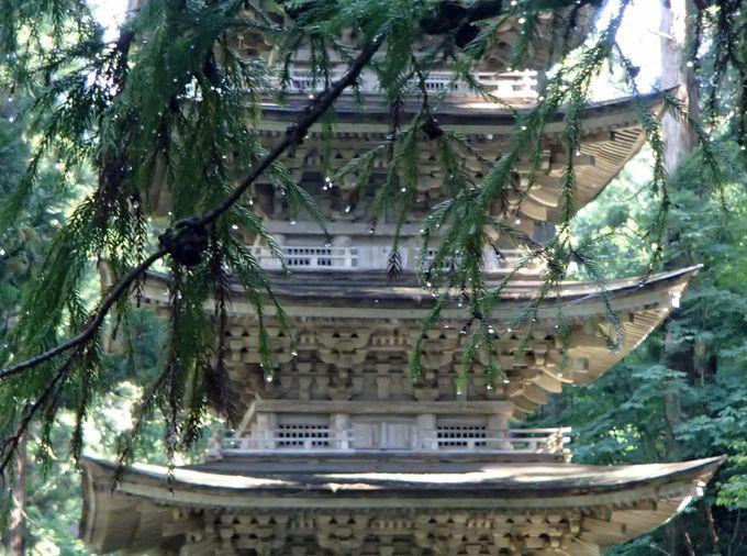 老杉に囲まれるように建つ五重塔
