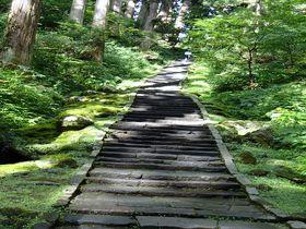 山形・羽黒山の夏。十二年に1度の御縁年に静寂な森に癒される朝散歩を!