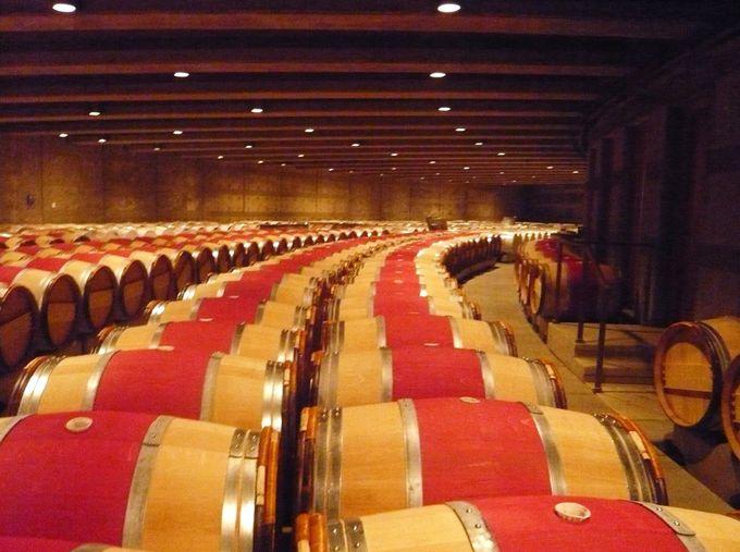 ずらりと並ぶ1000個のオーパス熟成樽