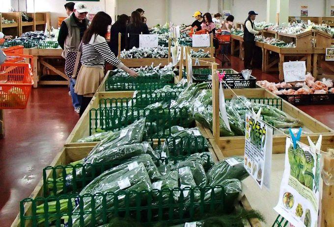 安くて嬉しい!沖縄の色濃い朝採り野菜が豊富なファーマーズマーケット