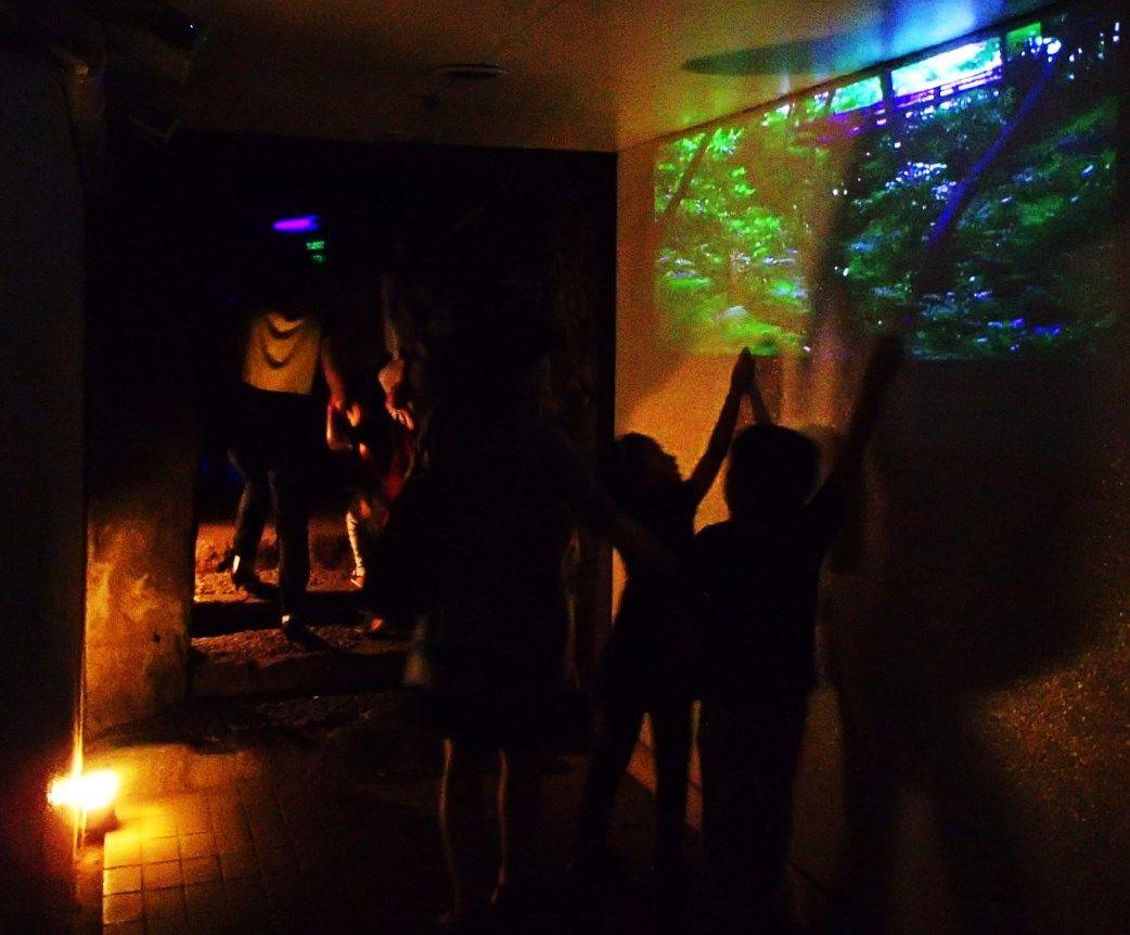 雨が降っても蛍観賞できる「ホテル椿山荘東京」のビオトープ!