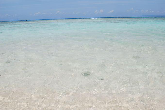 必見!エメラルドグリーンの美しい海、ニシ浜