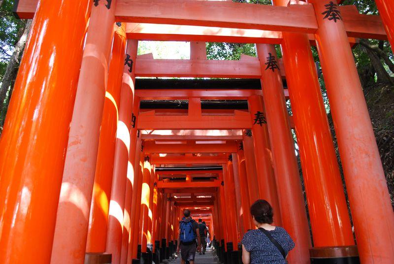 楽ちん♪京都の人気観光地を座って巡れるバスツアーとは?