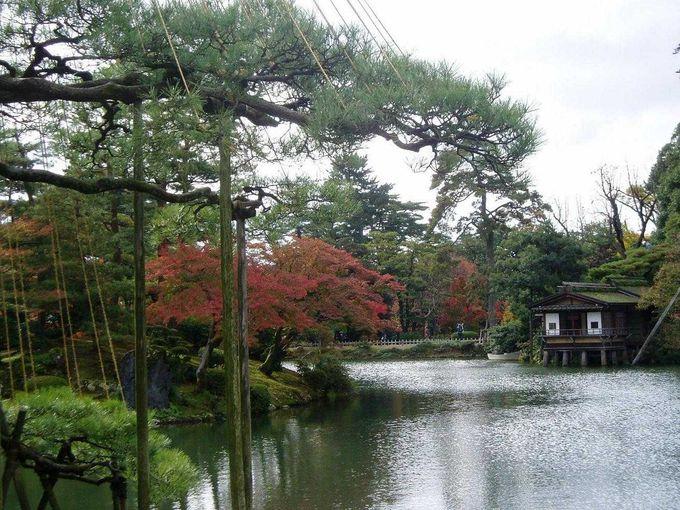 霞が池を眺めて