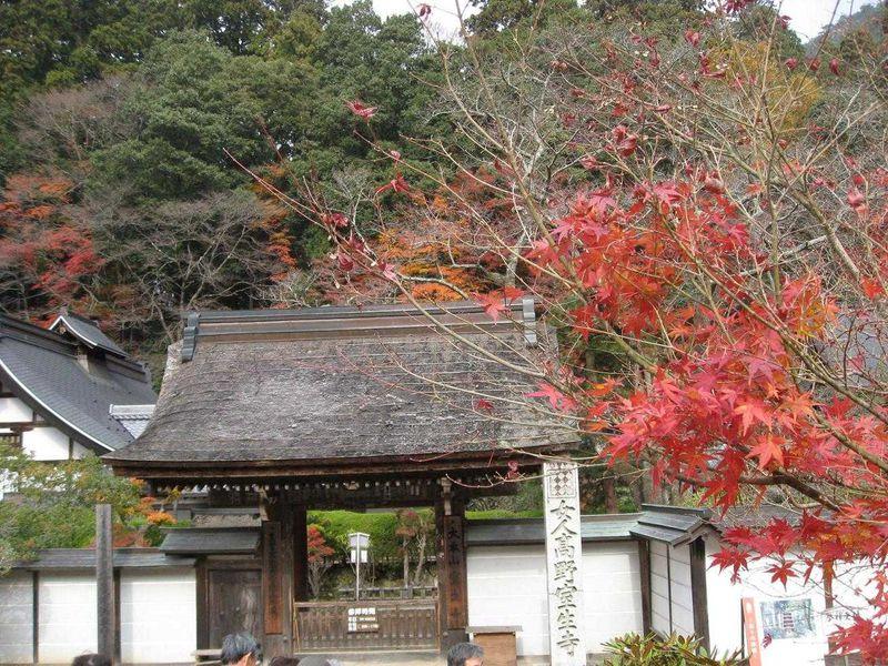 紅葉の室生寺