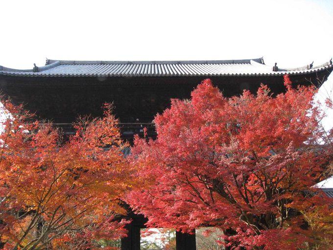 南禅寺といえば、三門が有名です。
