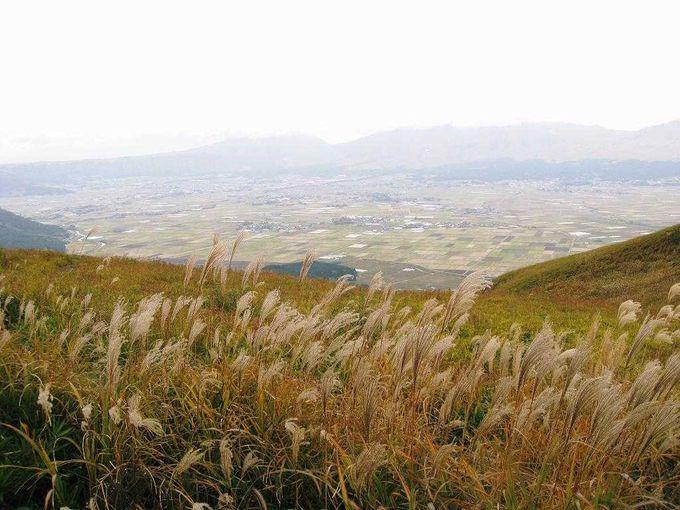 大観峰からカルデラへ