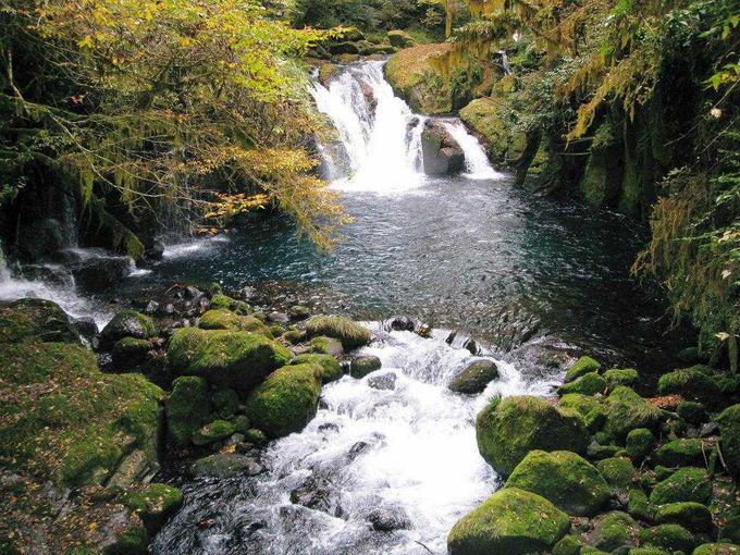 竜ヶ渕の天狗滝