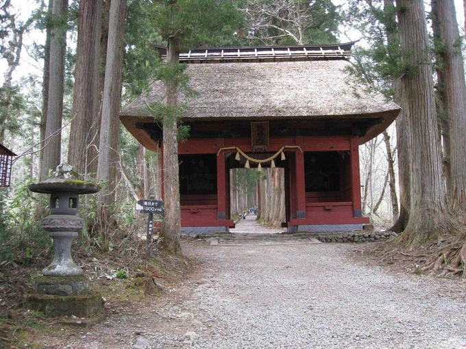 戸隠古道、奥社まで歩いてみましょう