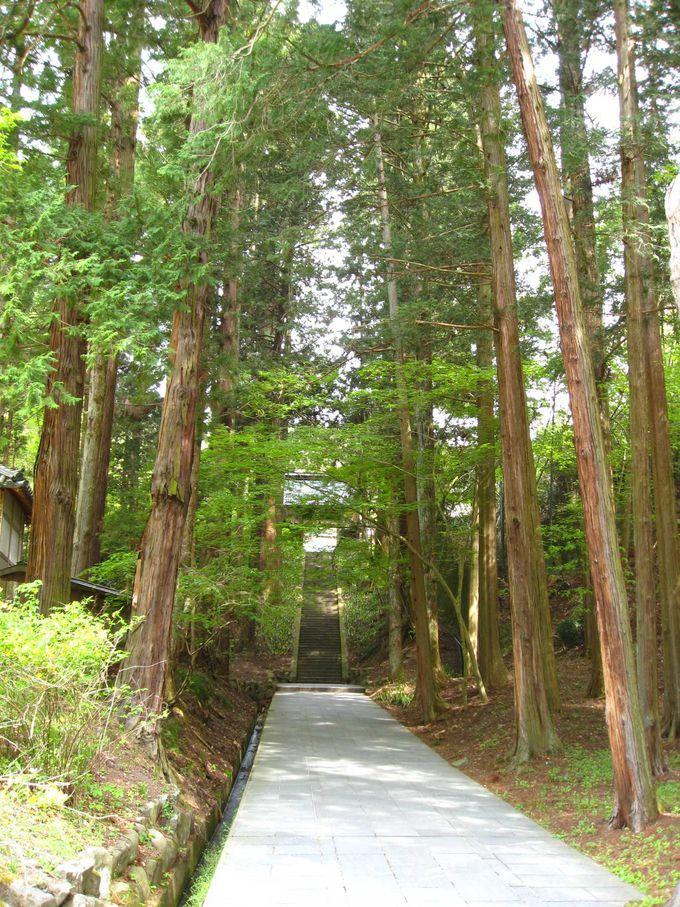 温泉街から歩いて安楽寺へ