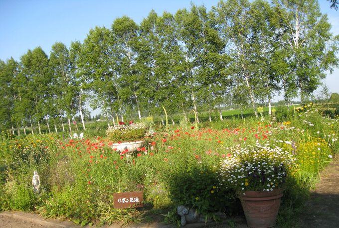 ガーデンの向こうは、広大な十勝平野