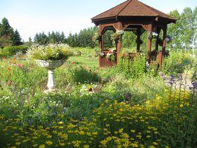 憧れの北海道ガーデン街道巡り 十勝平野に広がる夢の庭「紫竹ガーデン」
