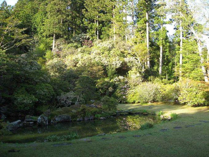 見事な天徳院庭園