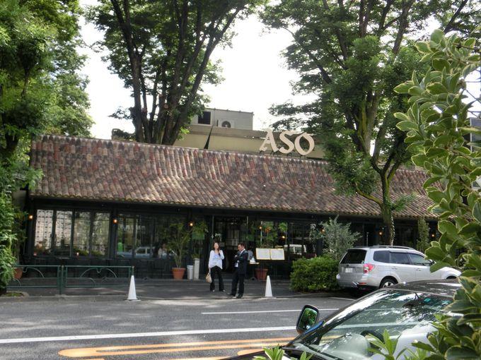 緑の中のカフェ・ミケランジェロ