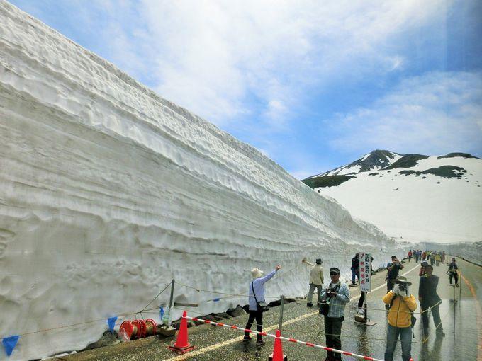 毎年6月頃までは、雪の白壁「大谷ウォーク」
