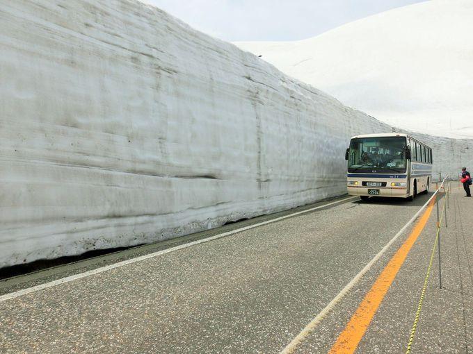 天空の雪の大谷ウォーク