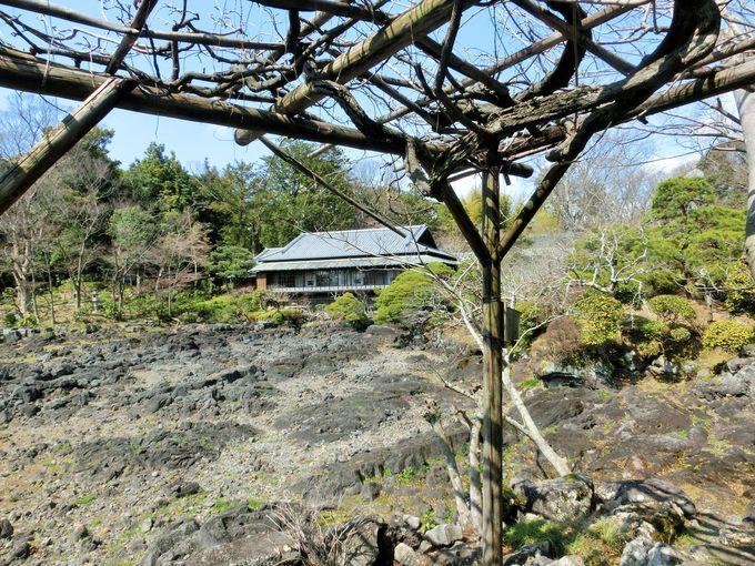 迫力ある富士山噴火の溶岩流跡