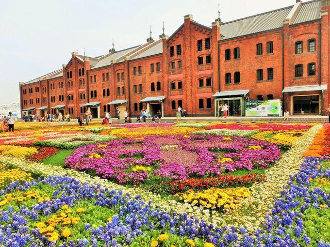 「横浜赤レンガ倉庫」と花畑が美しい