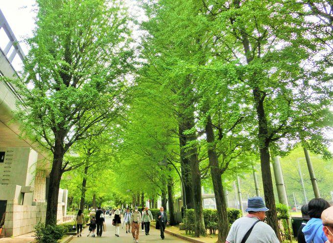 上野が世界文化遺産の街になるかも!?