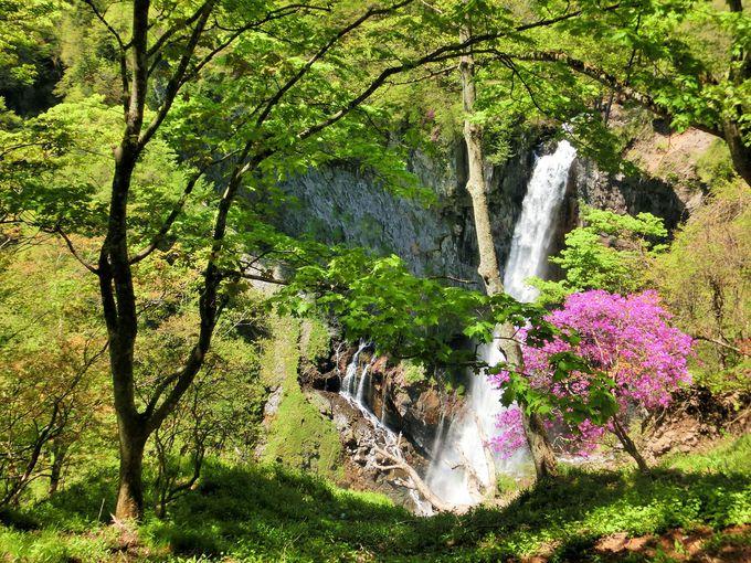 華厳の滝を先ずは上から眺める