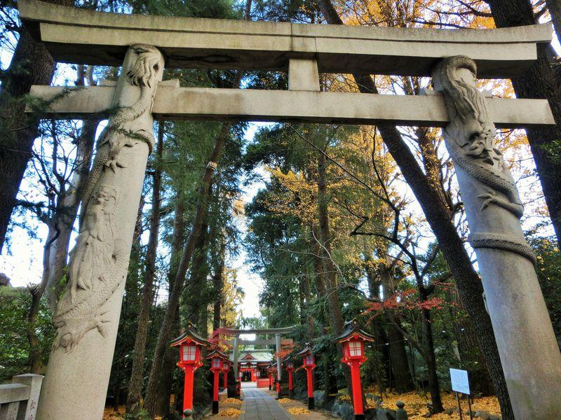 鳥居に龍が巻き付く!?パワーが溢れる東京「馬橋稲荷神社」