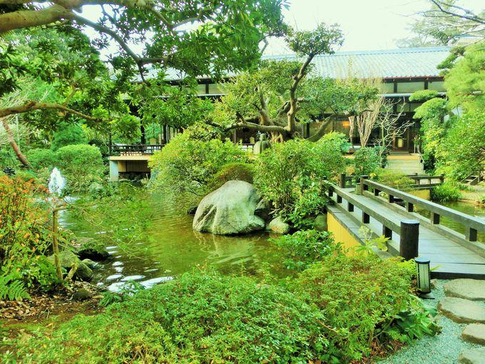 素晴らしい1万坪の庭園