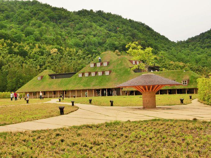 屋根の芝生が目印!「ラ コリーナ近江八幡」