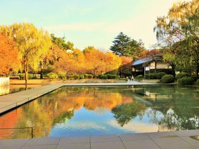 東京上野で、見るべき美しい紅葉スポット「東京国立博物館」