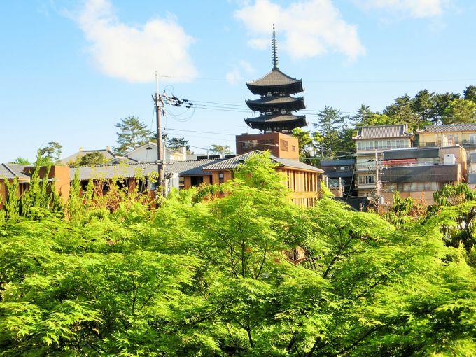興福寺の五重塔が目の前