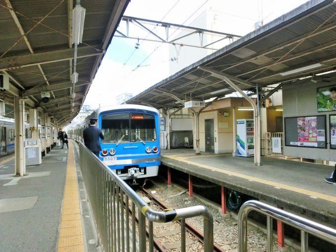 春めき桜のスポットは、小田原駅から20分!