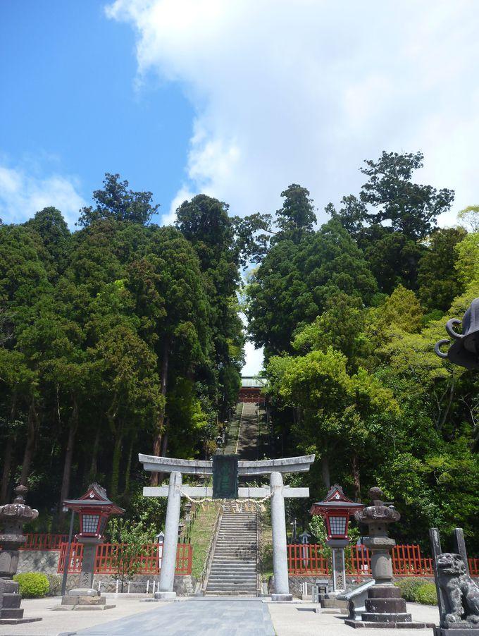 宮城を代表するパワースポットは桜の名所「鹽竈神社」