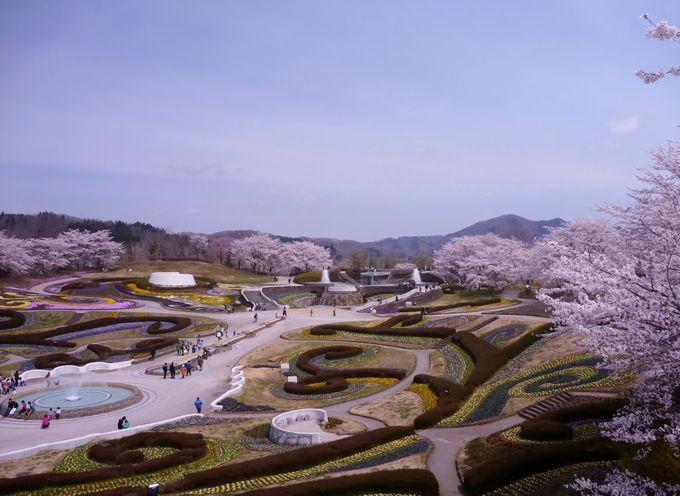 お出迎えは四季の花咲き乱れる南地区「彩の広場」