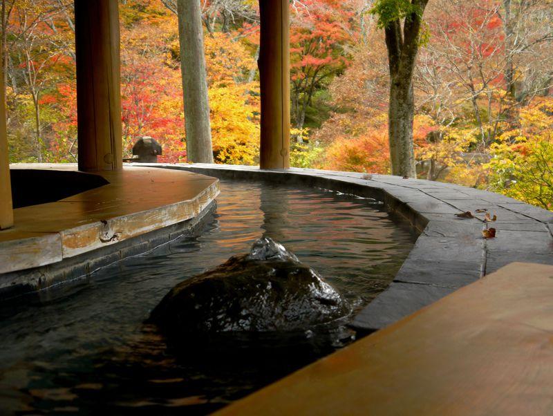 仙台の奥座敷にこだわりスペース!心がホッと秋保「木の家・天守閣自然公園」