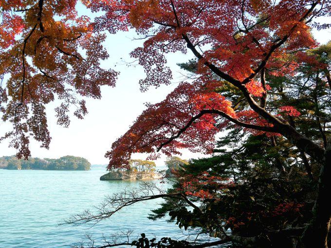 7.雄島(おしま)