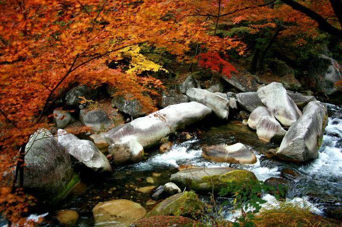 長い時間をかけて侵食された、花崗岩の天然芸術