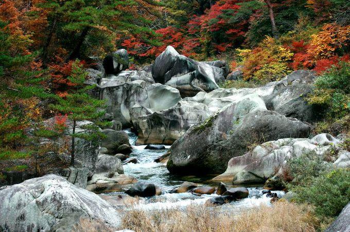白い岩肌と木々の色彩が織りなす渓谷の紅葉絶景!山梨「御嶽昇仙峡」