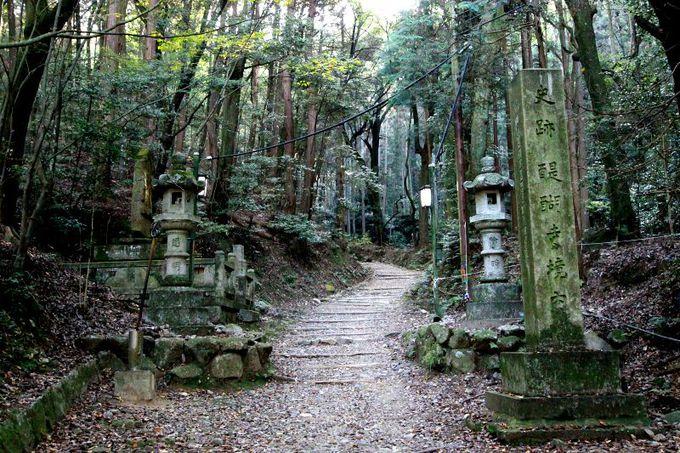 醍醐寺の境内裏手から始まる、自然豊かな登山道