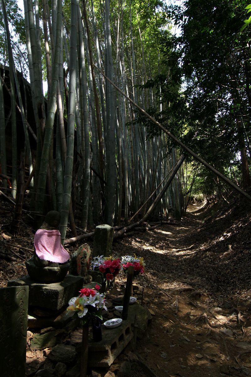 竹林と畑の中を通る素朴な古道「恩山寺道・立江寺道」