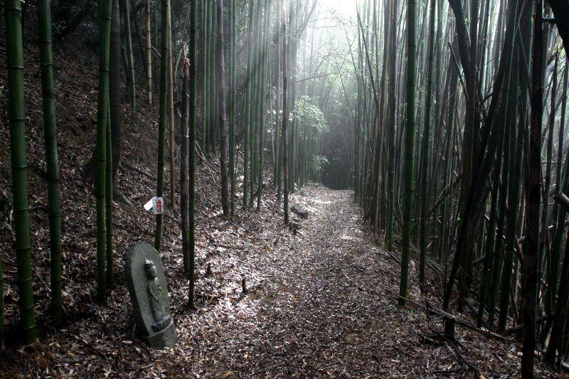 弥谷寺から続く平地の道「曼荼羅寺道」