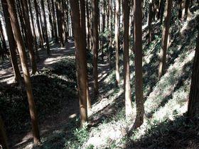 武田流の築城技術が丸ごと残る!愛知県新城市「古宮城跡」
