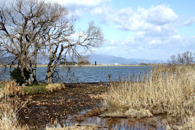 広大な内湖に面していた伊庭集落