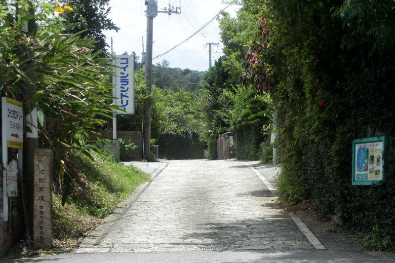 今泊集落から始まるハンタ道