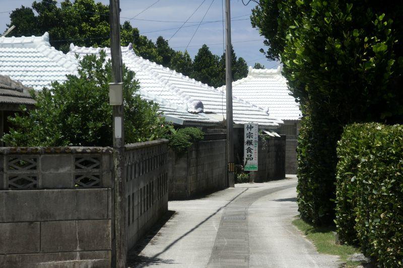 フクギが連なる沖縄の原風景!今帰仁村「今泊集落」を歩こう